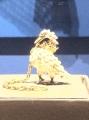 Čudoviti labod, verjetno amulet ali darilček, ki ga je nekoč nek vitez dobil za darilo.... menda je celo kraljevski